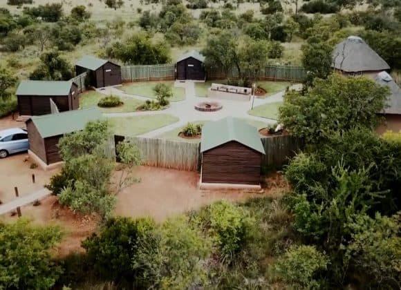 Bird Camp