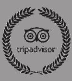Trip Advisor South Africa