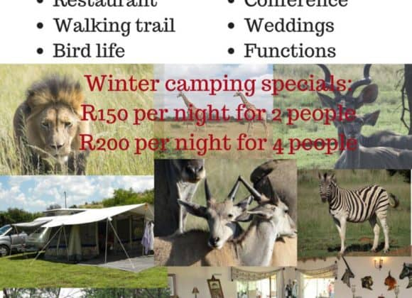 Winter Camping Special