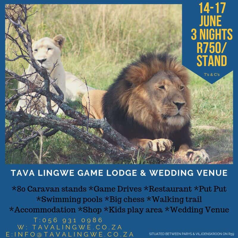 Camping Stand Special 14th – 17th June 2019